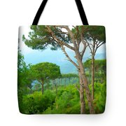 Do-00301 Pine Trees Forest In Aaraya Tote Bag