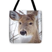 Do You Hear What I Hear? Tote Bag by Lori Frisch