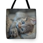 Do You Like Me Right Tote Bag