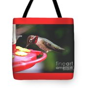 Do You Like My Snood Tote Bag