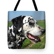 Dodgy The Dalmation Tote Bag