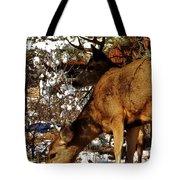 Doe And Buck Tote Bag