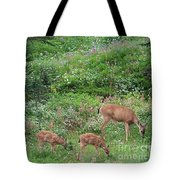 Doe And Twin Fawns Tote Bag