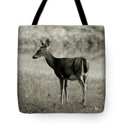 Doe By The Waters Edge Tote Bag