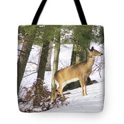 Doe Emerges Tote Bag