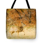Doe High Stepping On Bald Mountain Tote Bag