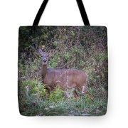 Doe In The Weeds Tote Bag