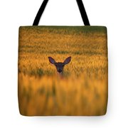 Doe In The Wheat Tote Bag