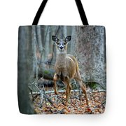 Doe On The Move Tote Bag