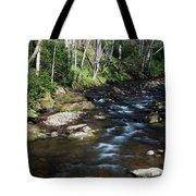 Doe River In April Tote Bag