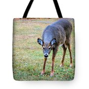 Doe Stomp Tote Bag