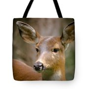 Doe With A Blaze Tote Bag