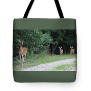 Doe With Twins Tote Bag