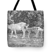 Doe With Twins Pencil Rendering Tote Bag