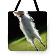 Dog - Jumping Tote Bag