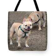Dog 381 Tote Bag
