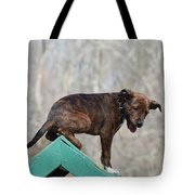 Dog 388 Tote Bag