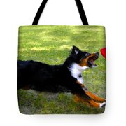 Dog And Red Frisbee Tote Bag