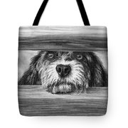 Dog At Gate Tote Bag