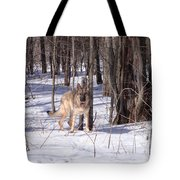 Dog Breed German Shepherd Tote Bag