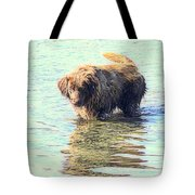 See The Sea Monster Coming Up From The Deep Dark Sea Looking For Something To Eat  Tote Bag