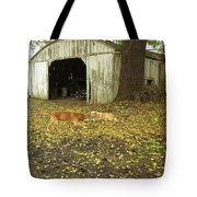Dog Day's Tote Bag