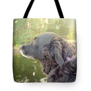 In The Autumn The Dog Looks Back At The Summer   Tote Bag