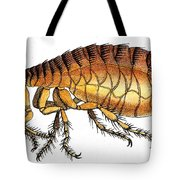 Dog Flea, Illustration Tote Bag