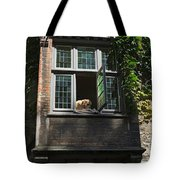 Dog In A Window Above The Canal In Bruges Belgium Tote Bag