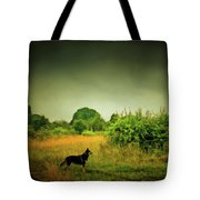 Dog In Chesire England Landscape Tote Bag