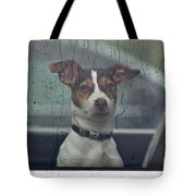 Dog Looking Out Car Window Tote Bag