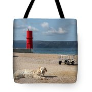 Dog Lying On The Beach In Front Of Red Lighthouse Of Cres Tote Bag