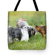 Dog Meeting  Tote Bag