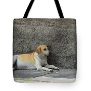 Dog Next To A Wall Tote Bag