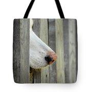 Dog Nose Tote Bag