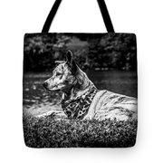 Dog On The Lake Tote Bag