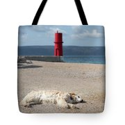 Dog Sleeping On The Beach In Front Of Red Lighthouse Of Cres Tote Bag