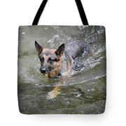 Dog Swimming In Cold Water Tote Bag
