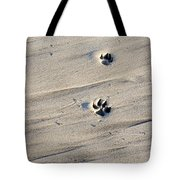 Dog Tracks In The Sand At Carmel Beach Tote Bag
