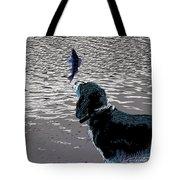Dog Vs Perch 3 Tote Bag