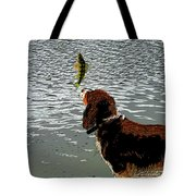 Dog Vs Perch 4 Tote Bag