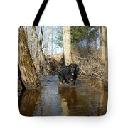 Dog Wading In Swollen River Tote Bag