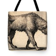 Dog With Rabies, Engraving, 1800 Tote Bag
