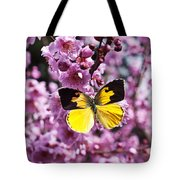Dogface Butterfly In Plum Tree Tote Bag