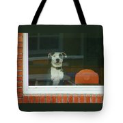 Doggie In The Window Tote Bag