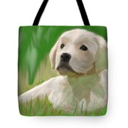 Doggie Seems Sad Tote Bag