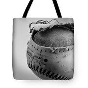Dog's Ball Tote Bag