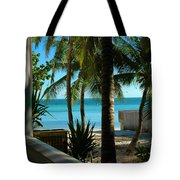Dog's Beach Key West Fl Tote Bag