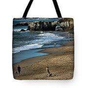 Dogs Beach Santa Cruz California Nature  Tote Bag