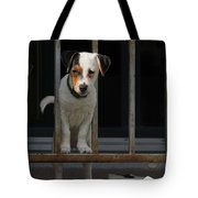 Dogs Family Tote Bag